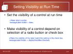 setting visibility at run time