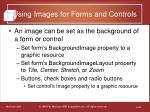 using images for forms and controls