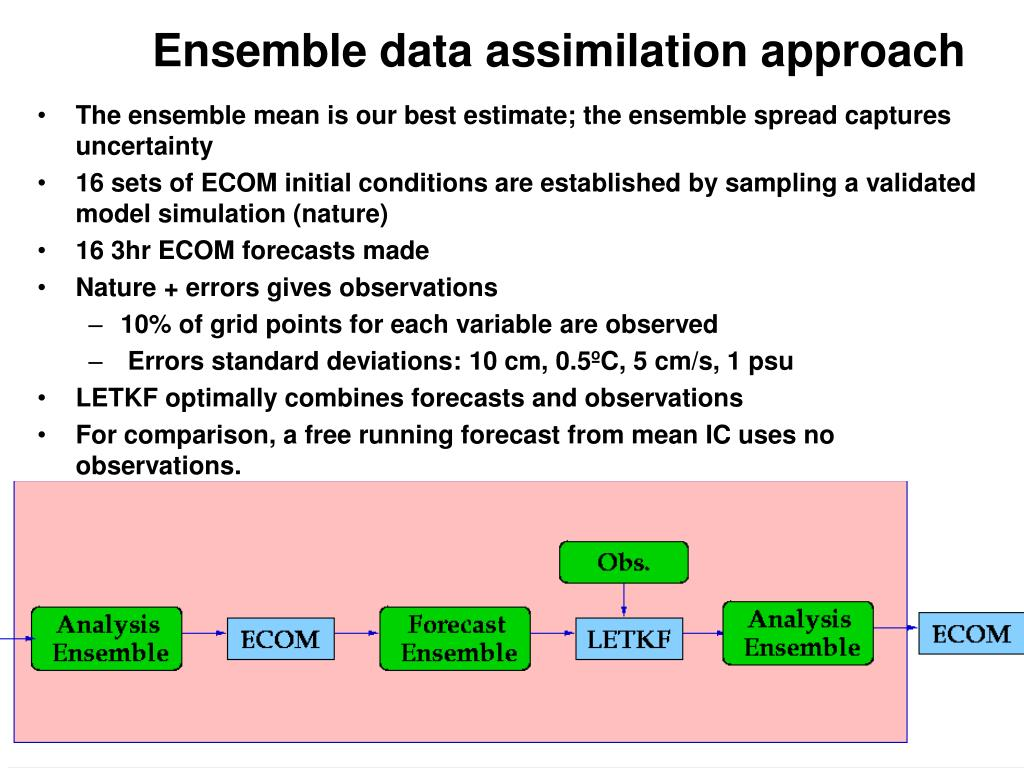 Ensemble data assimilation approach