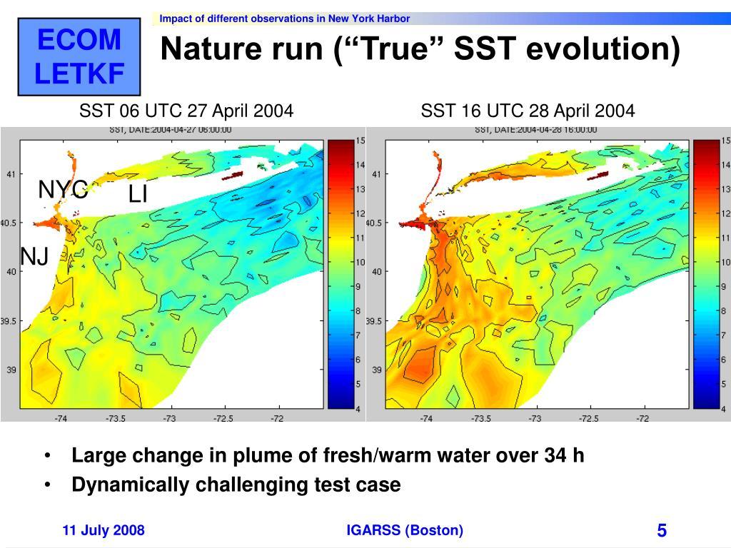 "Nature run (""True"" SST evolution)"