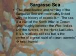 sargasso sea1