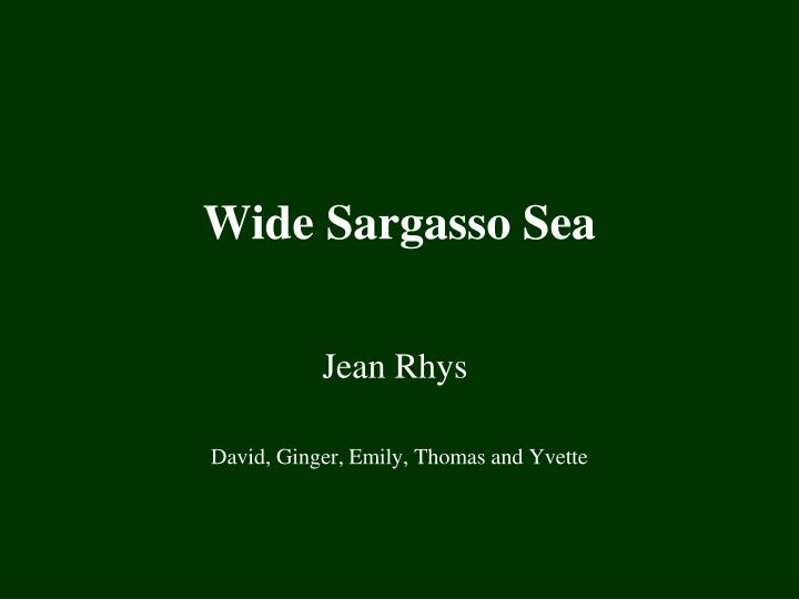wide sargasso sea n.