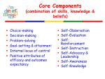 core components combination of skills knowledge beliefs