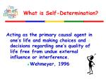 what is self determination