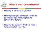 what is self determination1