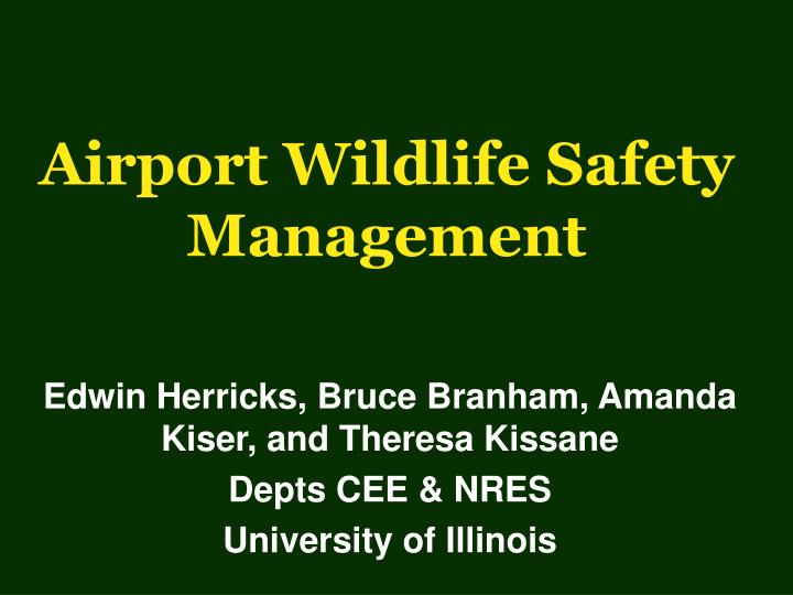airport wildlife safety management n.