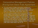 conjunctive management policies arising from swan falls agreement