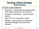 devising a brand strategy brand extensions2