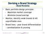 devising a brand strategy brand portfolios1