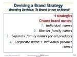 devising a brand strategy branding decision to brand or not to brand