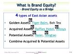 what is brand equity brand equity as a bridge1