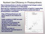 nutrient use efficiency in photosynthesis