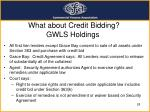 what about credit bidding gwls holdings
