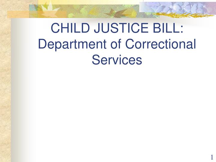 child justice bill department of correctional services n.