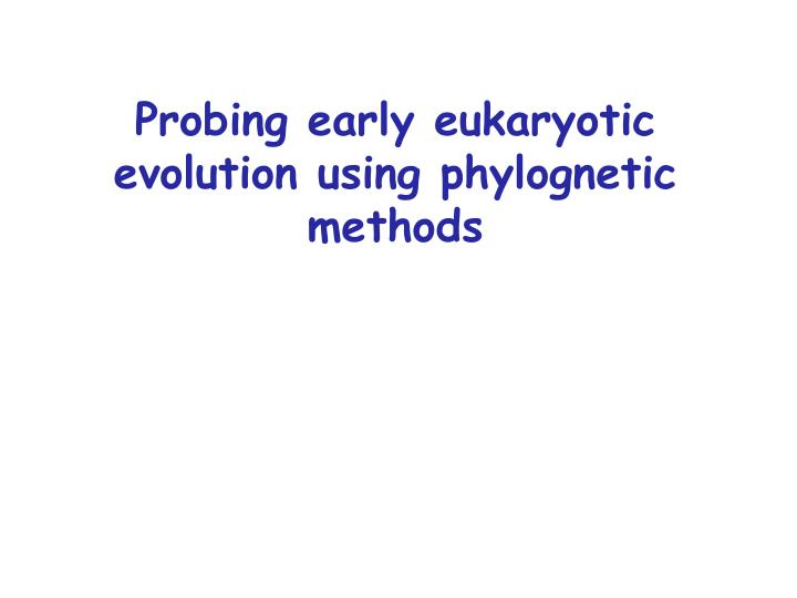 probing early eukaryotic evolution using phylognetic methods n.