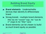 building brand equity choosing brand elements