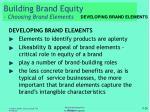 building brand equity choosing brand elements5