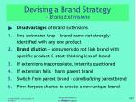 devising a brand strategy brand extensions1