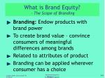 what is brand equity the scope of branding