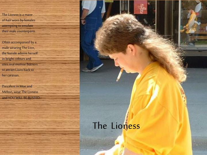 The Lioness is a mane