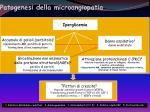 patogenesi della microangiopatia
