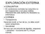 exploraci n externa3