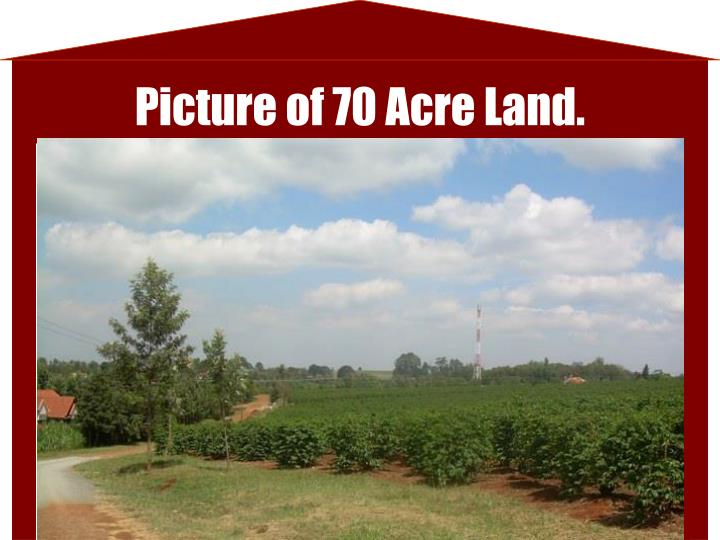 Picture of 70 Acre Land.