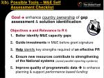 3 b possible tools m e self assessment checklist