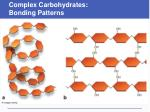 complex carbohydrates bonding patterns