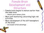 female brain development and structure