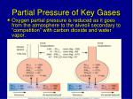 partial pressure of key gases