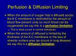 perfusion diffusion limiting