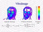 vibraimage