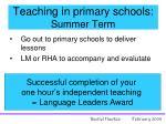 teaching in primary schools summer term
