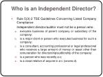 who is an independent director