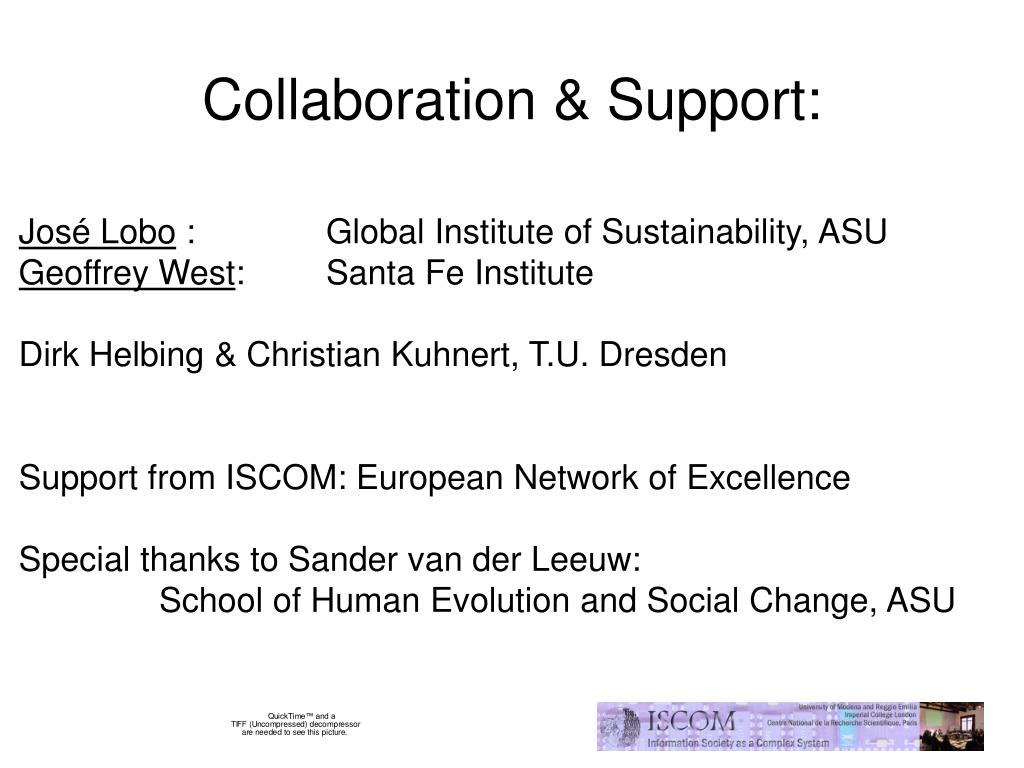Collaboration & Support: