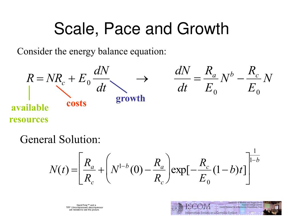 Scale, Pace and Growth