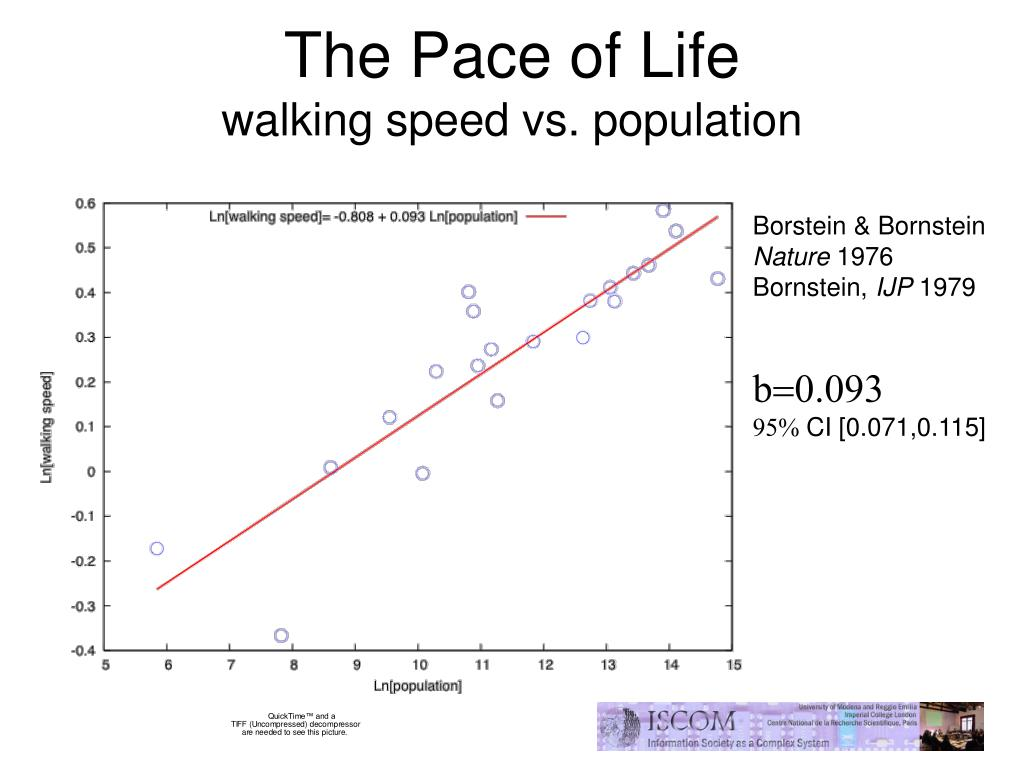 The Pace of Life