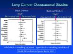 lung cancer occupational studies