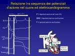 relazione tra sequenza dei potenziali d azione nel cuore ed elettrocardiogramma