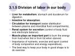 3 1 5 division of labor in our body