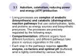 3 1 aabolism catabolism reducing power and energy atp production
