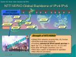 ntt verio global backbone of ipv4 ipv6