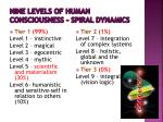 nine levels of human consciousness spiral dynamics