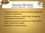 sponsor benefits2