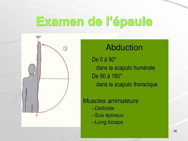 Examen de l'épaule