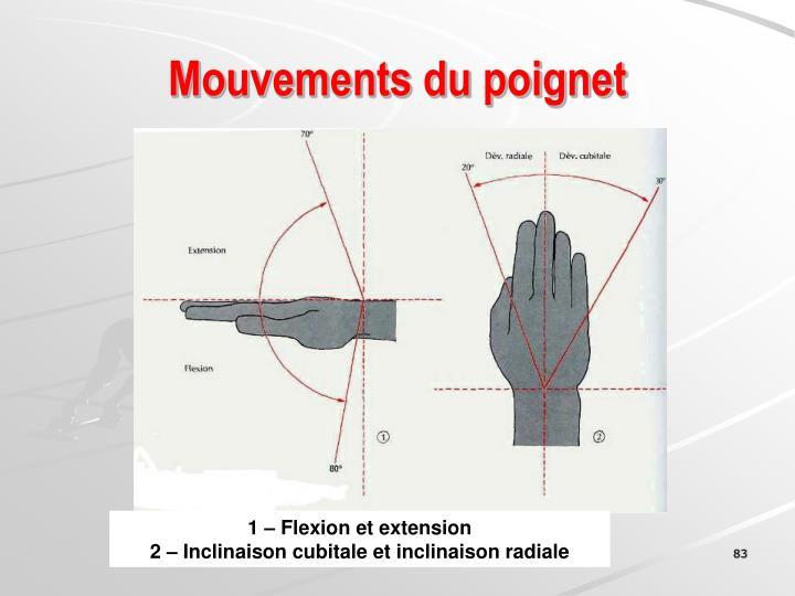 Mouvements du poignet