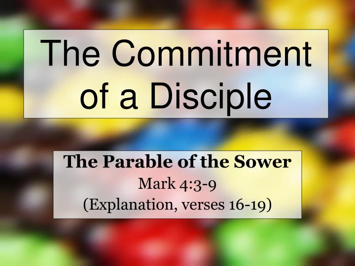 the commitment of a disciple n.