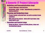 a generic it project lifecycle