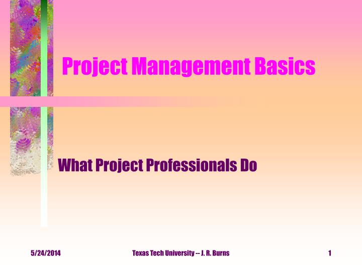 project management basics n.